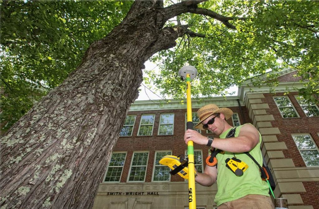 Arborist Consultations-Escondido CA Tree Trimming and Stump Grinding Services-We Offer Tree Trimming Services, Tree Removal, Tree Pruning, Tree Cutting, Residential and Commercial Tree Trimming Services, Storm Damage, Emergency Tree Removal, Land Clearing, Tree Companies, Tree Care Service, Stump Grinding, and we're the Best Tree Trimming Company Near You Guaranteed!