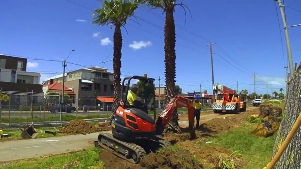 Palm Tree Removal-Escondido CA Tree Trimming and Stump Grinding Services-We Offer Tree Trimming Services, Tree Removal, Tree Pruning, Tree Cutting, Residential and Commercial Tree Trimming Services, Storm Damage, Emergency Tree Removal, Land Clearing, Tree Companies, Tree Care Service, Stump Grinding, and we're the Best Tree Trimming Company Near You Guaranteed!