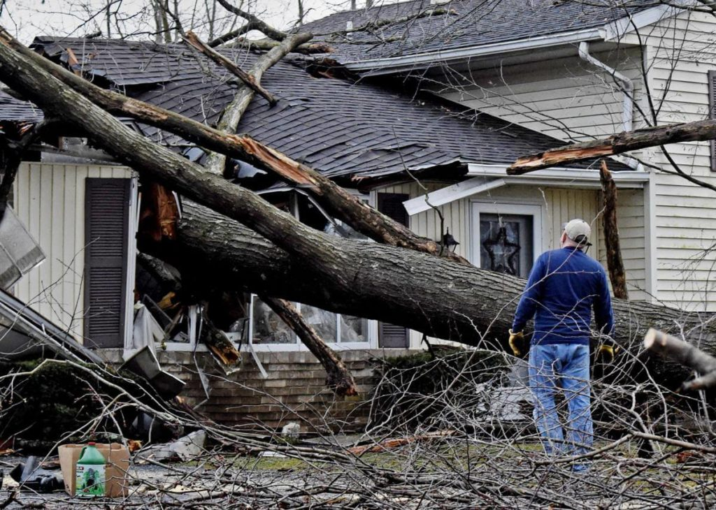 Storm Damage-Escondido CA Tree Trimming and Stump Grinding Services-We Offer Tree Trimming Services, Tree Removal, Tree Pruning, Tree Cutting, Residential and Commercial Tree Trimming Services, Storm Damage, Emergency Tree Removal, Land Clearing, Tree Companies, Tree Care Service, Stump Grinding, and we're the Best Tree Trimming Company Near You Guaranteed!